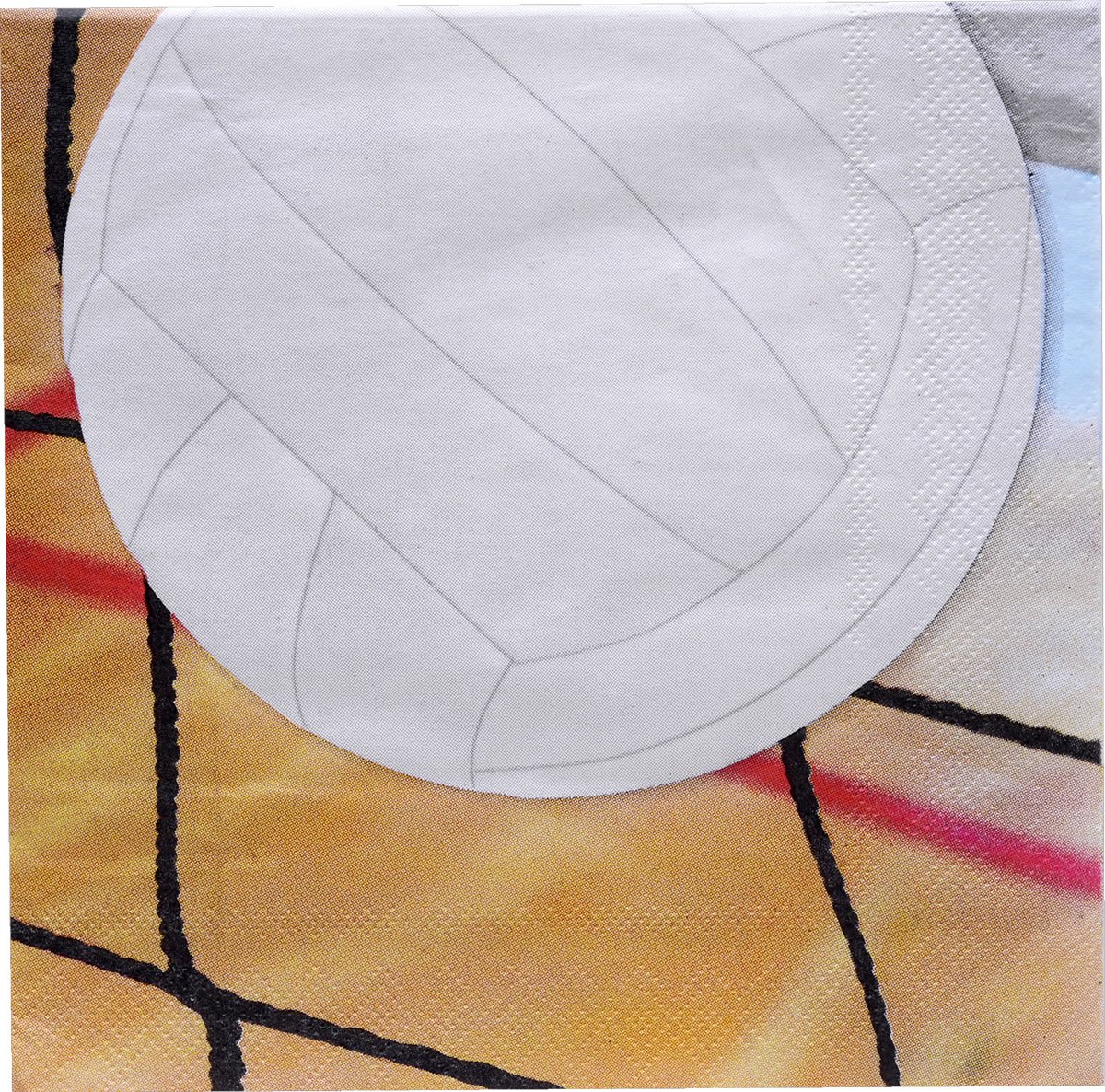 Volleyball Luncheon Napkins - 16 pk.